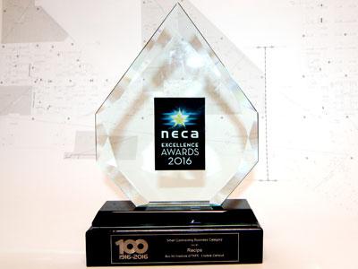 RECIPS NECA Award